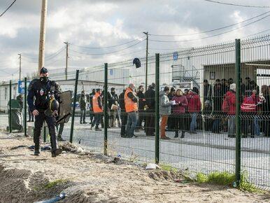 Polak zginął w Calais na barykadzie ustawionej przez migrantów. Jest...