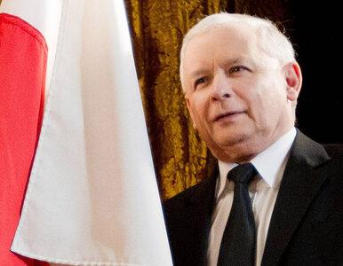 Poseł PiS: Kaczyński prezydentem? Trzeba poszukać innego kandydata