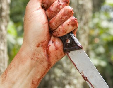 Poseł dźgnięty nożem na obchodach 11 listopada