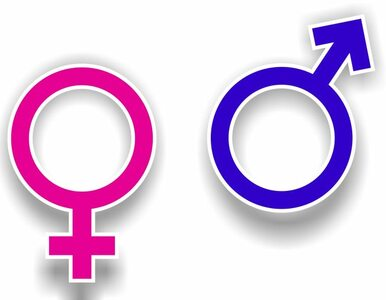 O. Kozacki o gender: Fałszem jest, że odpowiada za wszelkie zło