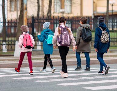 Uczniowie wrócą do szkół od września? Minister edukacji podał kilka...