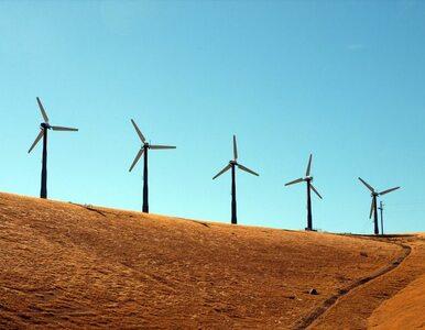 Szukasz pewnego zysku? Zainwestuj w... turbiny wiatrowe