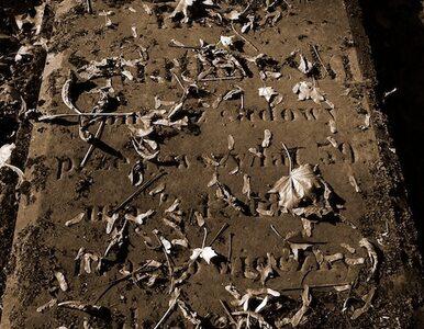 Cmentarz żydowski na Bródnie zdewastowany