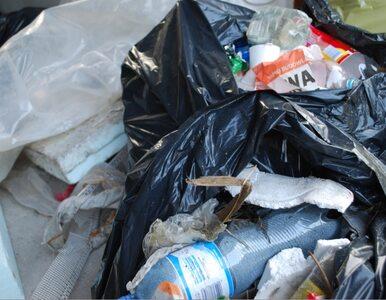 Spółka bezpodstawnie podniosła ceny za odbiór śmieci. Zapłaci karę