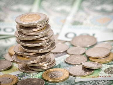 CBŚP rozbiło gang, który zajmował się wyłudzeniami funduszy unijnych