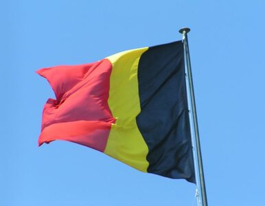 Król Belgii zdradzał dziennikarzowi sekrety rodzinne?