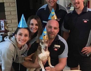 Huczna impreza, tort i prezenty. Tak urodziny świętował 13-letni pies