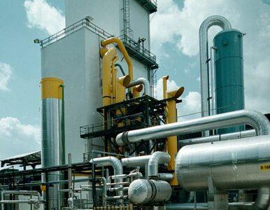 Ministerstwo Skarbu Państwa pozbędzie się udziałów w spółkach chemicznych?