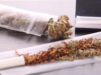 Jak marihuana wpływa na plemniki? Nawet naukowcy byli zaskoczeni