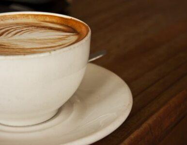 Kawa rozleniwia pracowitych!