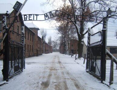 Świat ma 80 milionów euro na konserwację Auschwitz