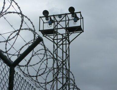 Kuba: tortury? Jakie tortury?