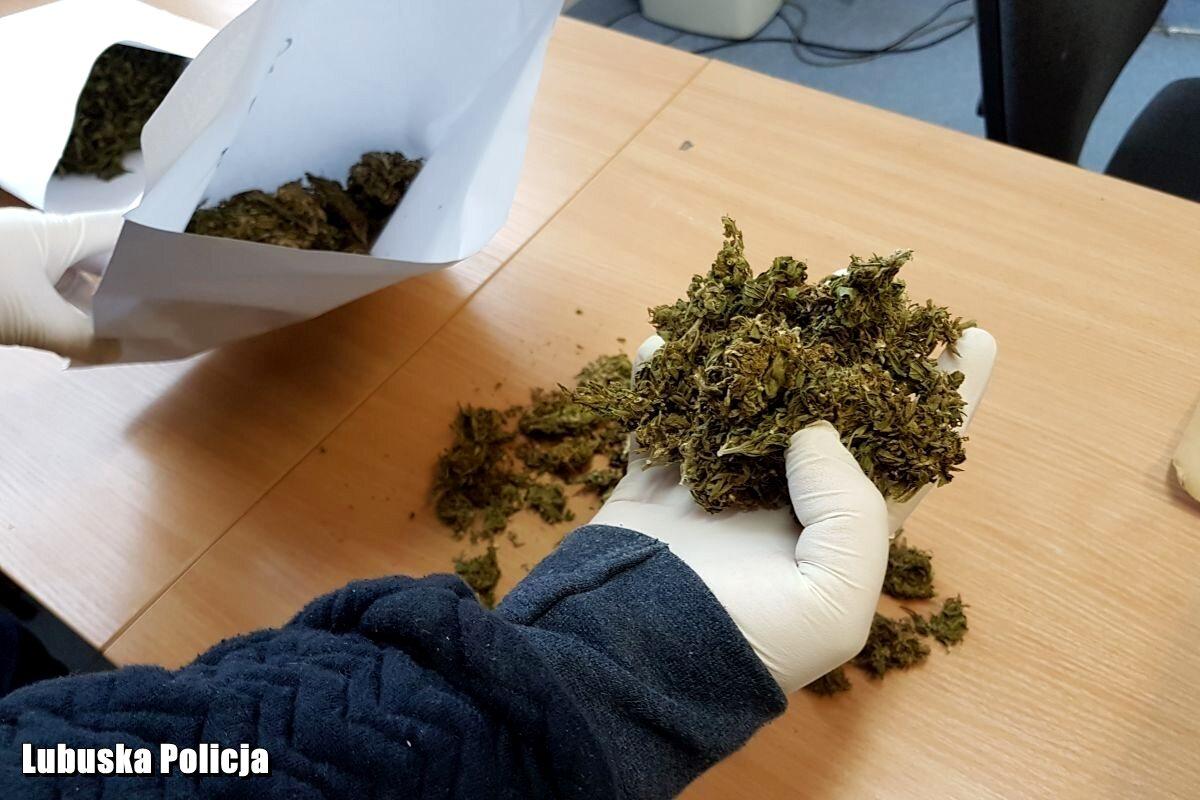 Policjanci znaleźli w mieszkaniu narkotyki