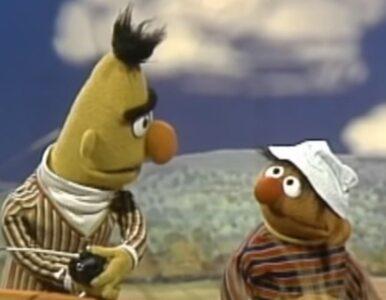 """Bert i Ernie z """"Ulicy Sezamkowej"""" są parą gejów? Studio ucina spekulacje"""