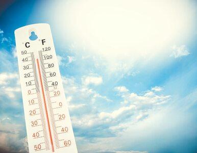 Prognoza pogody. Dużo słońca i ponad 20 stopni. Kolejne dni będą dalej...