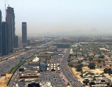 Zjednoczone Emiraty Arabskie zrealizują w Polsce największa inwestycję...