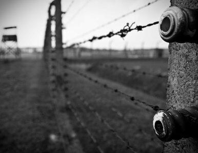 Rumunia: minister negował Holokaust. Organizacje chcą jego odwołania