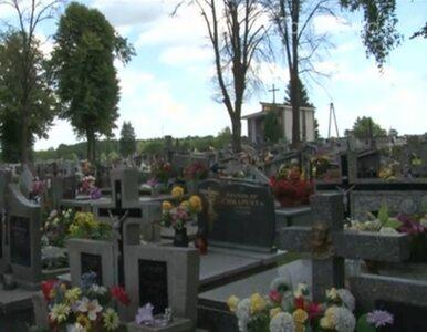 Kto zatruł drzewa na cmentarzu w Biadolinach? Burmistrz zlecił...