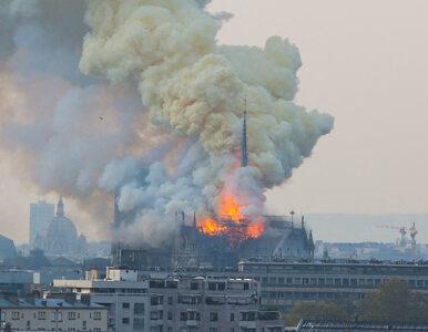 Kto spaliłkatedrę Notre Dame?