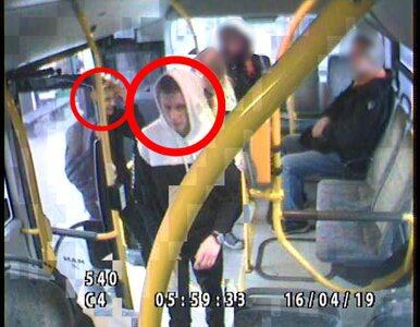 Policja szuka sprawców pobicia. Rozpoznajesz tych mężczyzn?