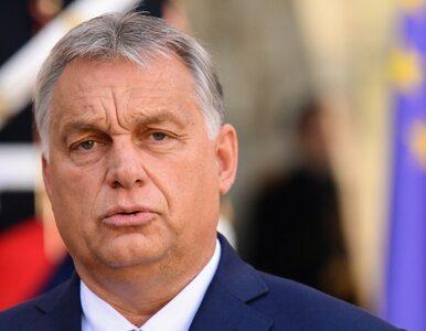 """Orban gratuluje zwycięstwa PiS. """"Bardzo ważne wybory z punktu widzenia..."""
