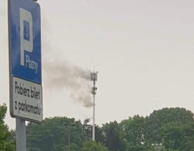 Pierwsze podpalenie masztu 5G w Polsce. Zwolennicy spisku zaatakowali w...
