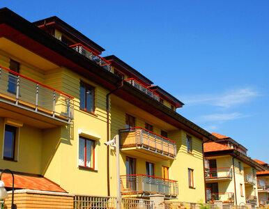 NBP: mieszkań dużo, ale bez załamania