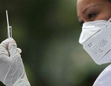 Włochy: wniosek do NIK o sprawdzenie szczepionek przeciw nowej grypie