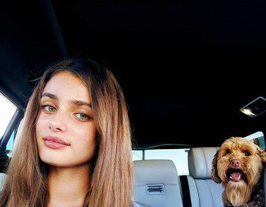 Pies modelki Victoria's Secret budzi skrajne reakcje. Co o nim sądzicie?