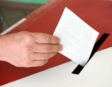 Głośna cisza. SLD rozpoczyna konsultacje ws. zniesienia ciszy wyborczej
