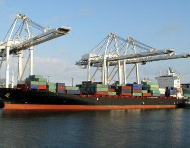 USA i Japonia: Argentyna łamie zasady wolnego handlu