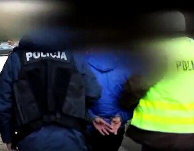 Zatrzymanie przywódców mafii handlującej Polakami. Zobacz nagranie z akcji