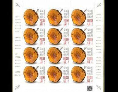 Polski znaczek pocztowy najpiękniejszy na świecie