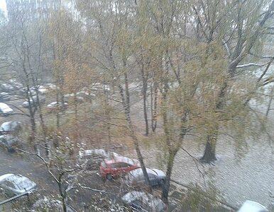 Śnieg i mróz - do Polski zawitała już zima