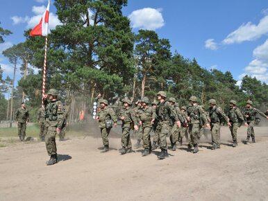 Szef MON o rozwoju armii: Za 10-12 lat będziemy w stanie powstrzymać...