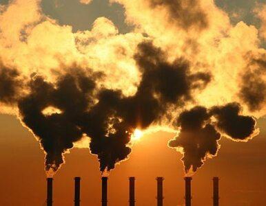 """""""Szczyt UE ws. pakietu klimatycznego będzie mieć wpływ na inwestycje"""""""