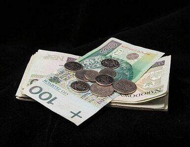 Poznań dał mieszkańcom 10 milionów złotych do wydania