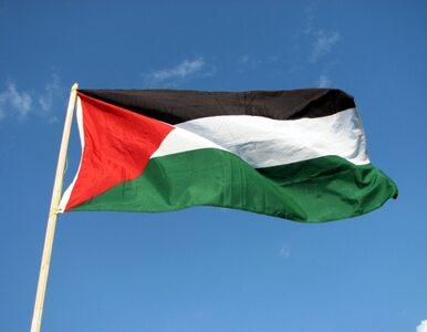 Śmierć palestyńskiego nastolatka. Trzech Izraelczyków przyznało do winy?