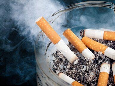 Już nie palenie, a podgrzewanie. Naukowcy pozytywnie oceniają nową metodę