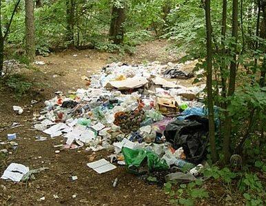 Od lipca 2013 wejdzie w życie ustawa śmieciowa?