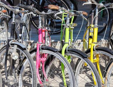 Jakie są prawa i obowiązki rowerzysty w ruchu drogowym?