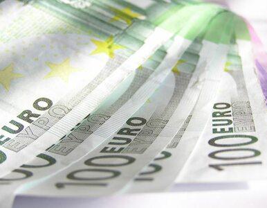 """""""Centralny budżet eurolandu wyniósłby 20 miliardów euro"""""""