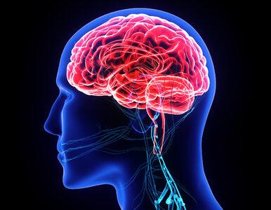 Jak bez otwierania głowy chorego sprawdzić, które części mózgowia...