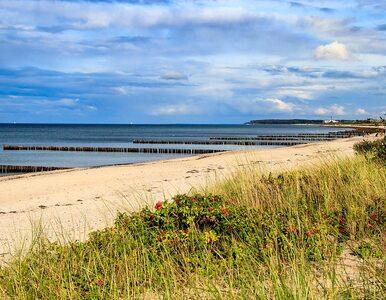 GIS zamknął kolejne kąpieliska nad Bałtykiem. Powodem zakwit sinic