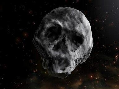 Martwa kometa w kształcie ludzkiej czaszki zbliży się do Ziemi