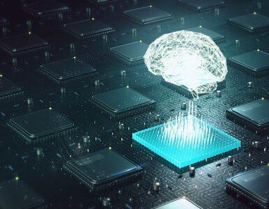 Polacy obawiają się Sztucznej Inteligencji