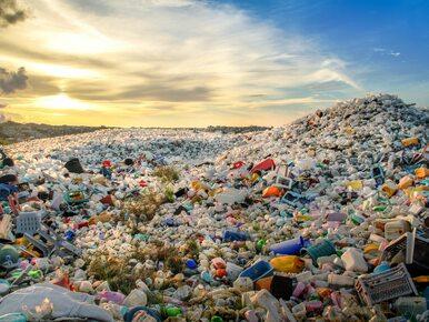 Codzienność zdominowana przez plastik? Ten film skłania do refleksji