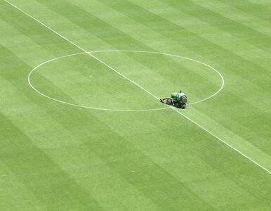 LE: Hannover remisuje z Levante, PSV lepsze od Napoli