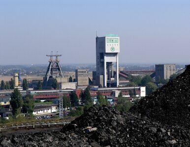"""""""Górnicy mają przywileje niezależne od efektywności. Związki wykozystują..."""