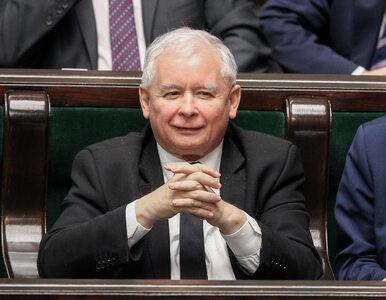 """.Nowoczesna składa do prokuratury doniesienie na Kaczyńskiego. """"Podżega..."""